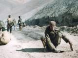 Asfalto 3 // Asphalt 3 (Leh-Manali road)